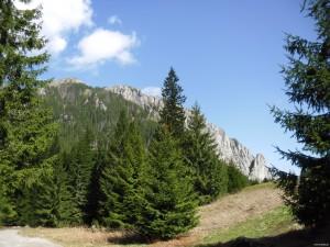 Dolina Kościeliska w Zakopanem