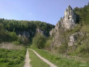 Dolina Kobylańska1