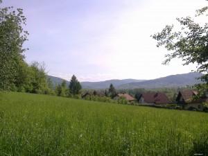 Widok z Pańskiej Góry