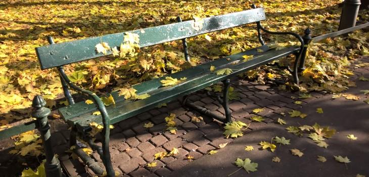 Jesienna ławka